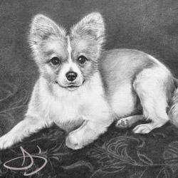 Dog Portraits | Dog Drawing Portraits Paintings, Charcoal